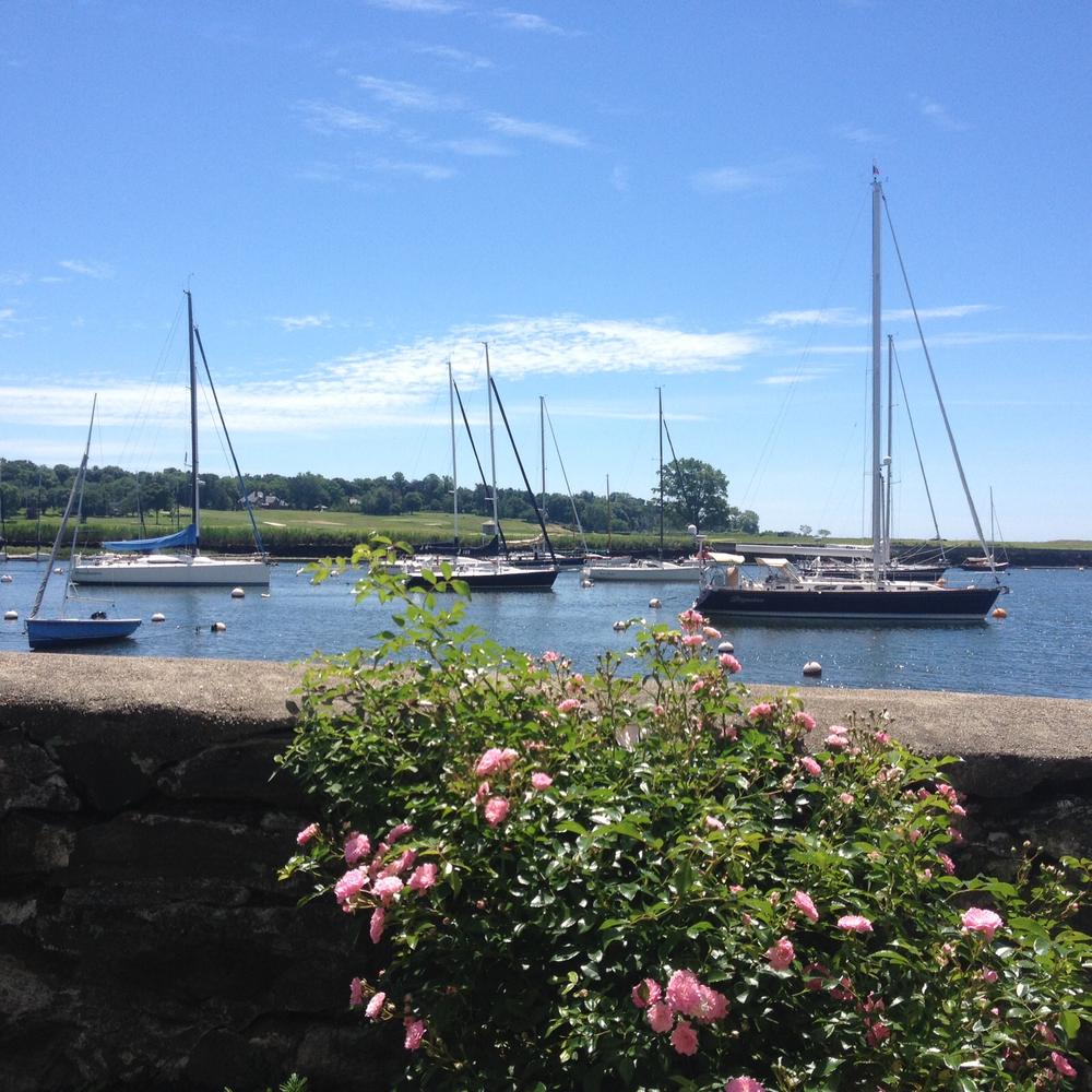 Links Community Sailing Of Fairfield