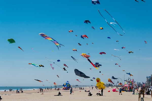 Kite Festival in Ocean City, Maryland  - Darren Elias Photography