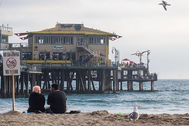 Ah summer, it's the time when you can spot many different breeds of lovebirds enjoying a sunset on the beach.⠀ ⠀ ------------------⠀ ⠀ #beachwalk #beachmode #beachmood #beachmoments #socalbeaches #beachlifestyle #beachwalks #santamonicapier #santamonicabeach #santamonicasunset #santamonicalife #boardwalks #sunsetbeach #picnics #picniconthebeach #beachpicnic #pacificocean #pacificcoast #pacificblue #pacificwonderland #unlimitedcalifornia #losangeles_city #la_online #Conquer_LA #caliinviteyou #losangelesworld #WhereAm_I_LA #CaliforniaCaptures