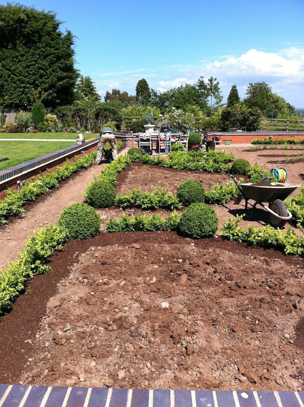 Sandy Acre — Caroline Edwards Gardens