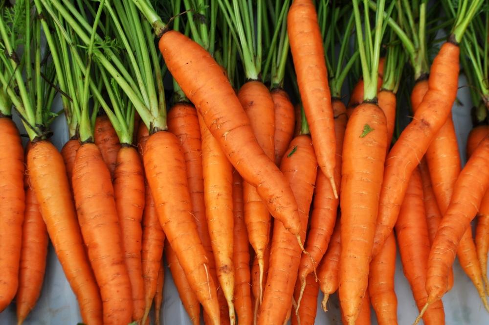 organic_carrots_web.jpg