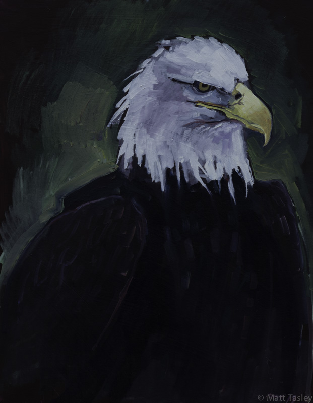 """Bald Eagle"", Oil on canvas, 36"" x 30"""