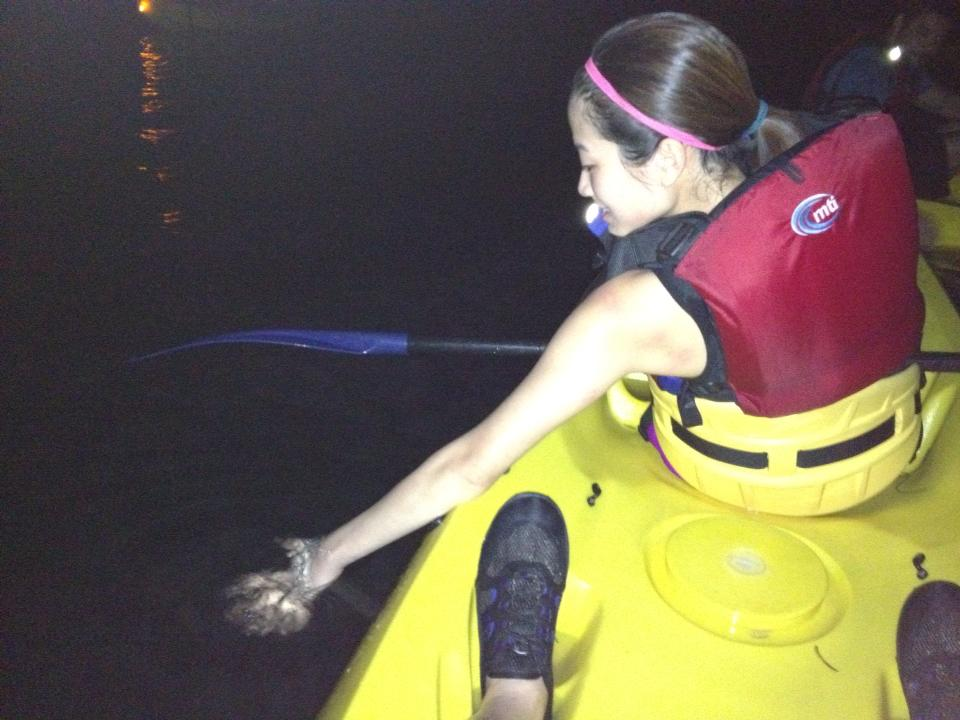 Kayaking in the bioluminescent bay