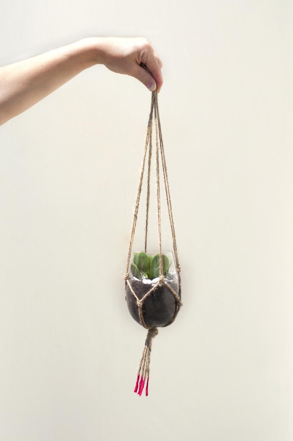 Hanging Macrame Succulent.jpg