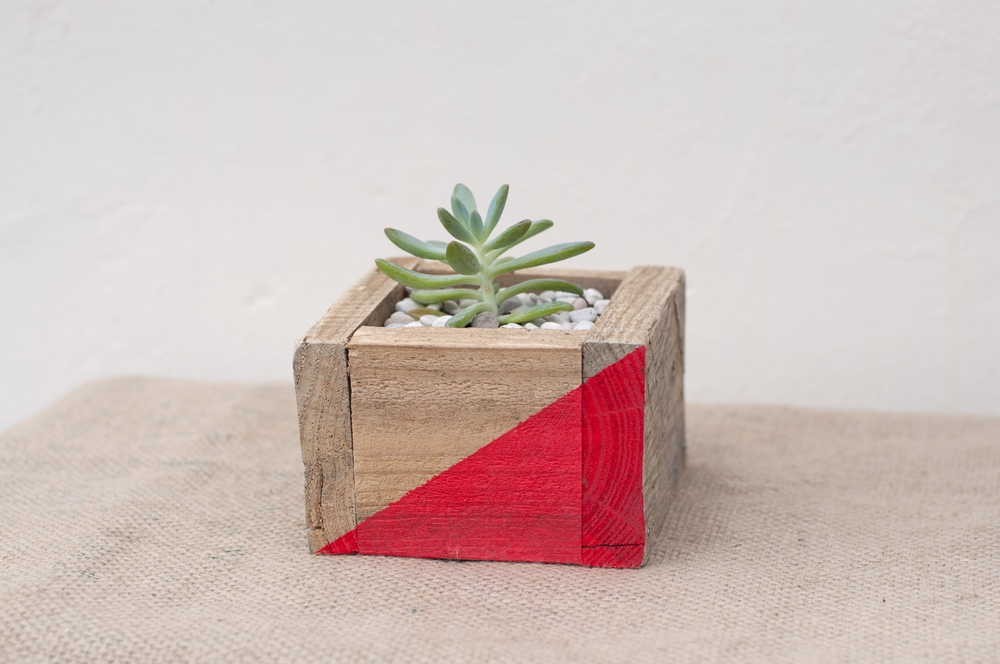 I used to be a pallet   Recycled from a pallet, given new love by an electric saw, nails and some paint. Happy to live indoors or outdoors, they instantly brighten up any setting.     30cm wide, 15cm deep and 15cm tall   $35   Available in a variety of sizes and colours.