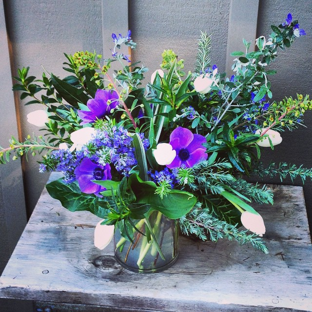 This morning got a little electric. #vennfloral #foragedflowers #seasonalsonomacounty #organicdesign #anemone