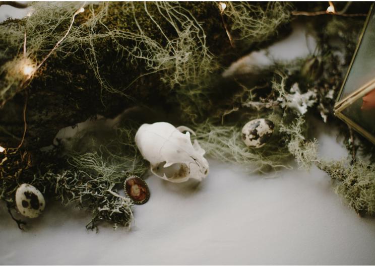 Photography: Kristen Marie Parker