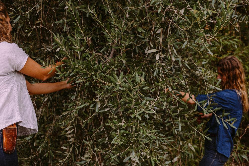 Heather & Camille of Venn Floral