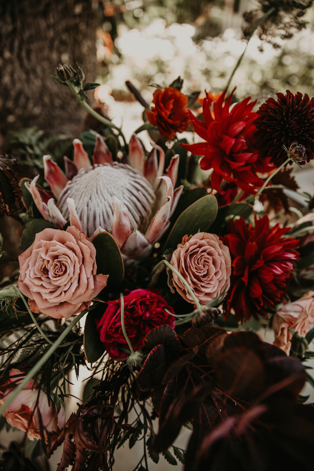 Moody floral palette with King Protea, Dahlias, Agonis, and Garden Roses by Venn Floral at Beltane Ranch. Photographed by Vera Frances.