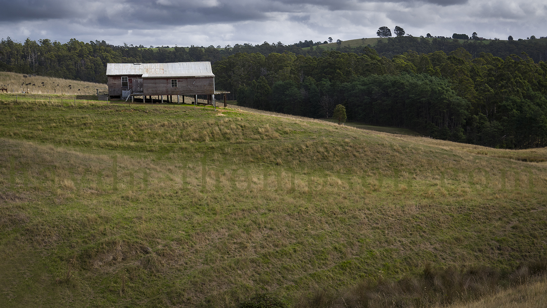 Farm View [Digital File Sale]