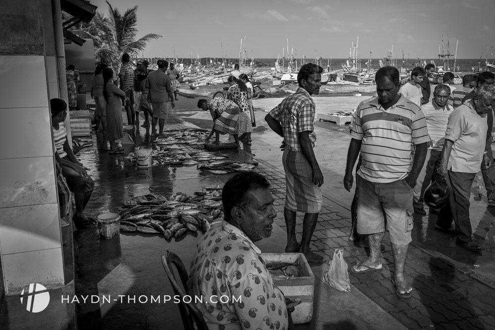 Fish Market (Small Size - Watermark).jpg