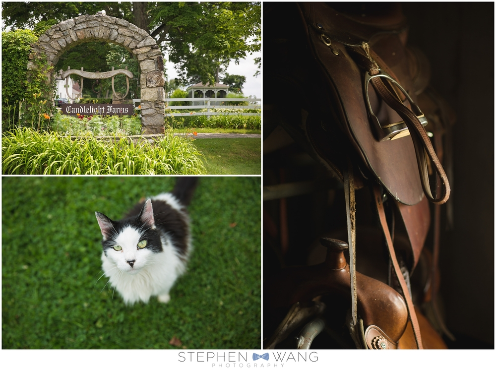 Stephen Wang Photography Connecticut photographer CT Candlelight Farms Inn New Milford CT Summer Wedding New Haven-11-10_0001.jpg