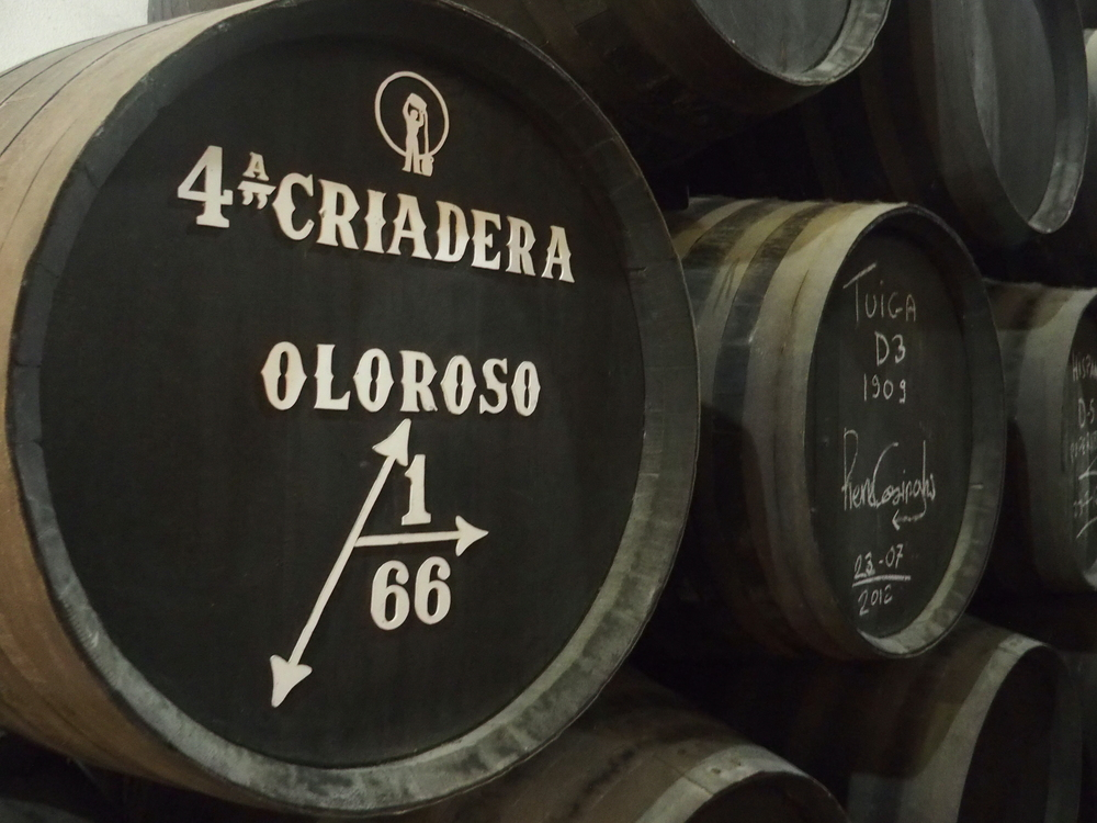 Bodegas Tradicion Oloroso 4th Criadera.JPG