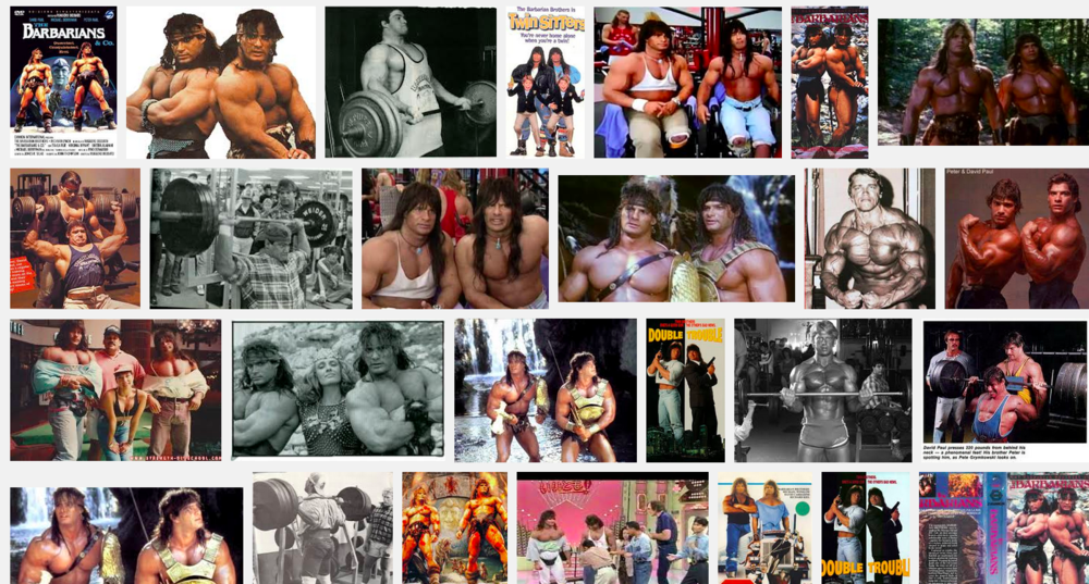 Google image search for  The Barbarian Brothers