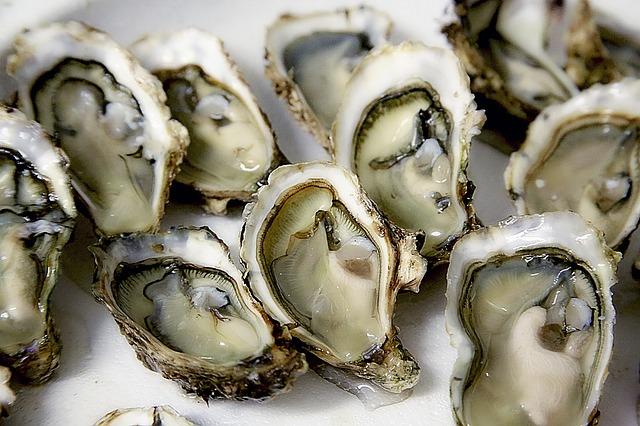 oyster-1522835_640.jpg