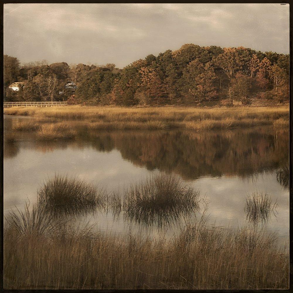 Wellfleet Tidal Marsh by Rebecca Bruyn