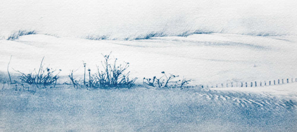 Winter Dunes by Rebecca Bruyn