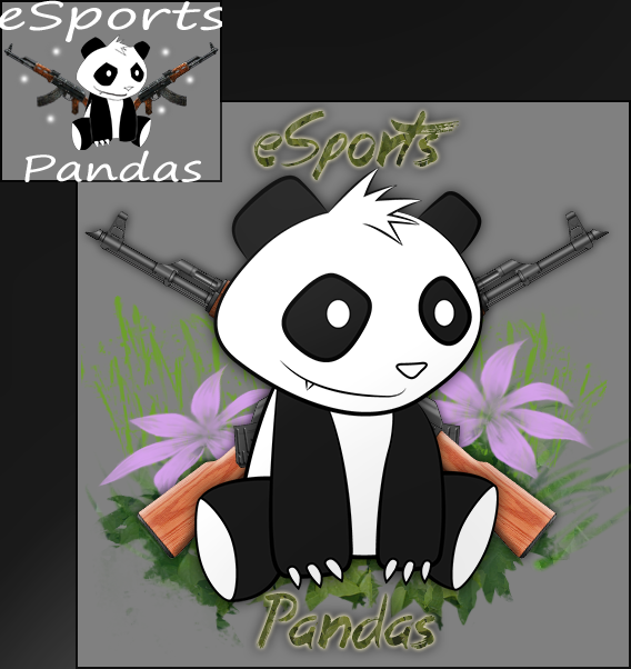 eSports Pandas before and after
