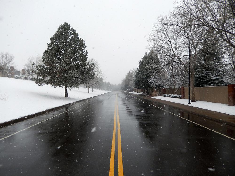 Snowy Jamison