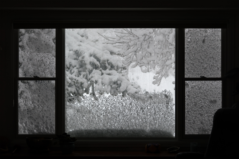 Blizzard Window