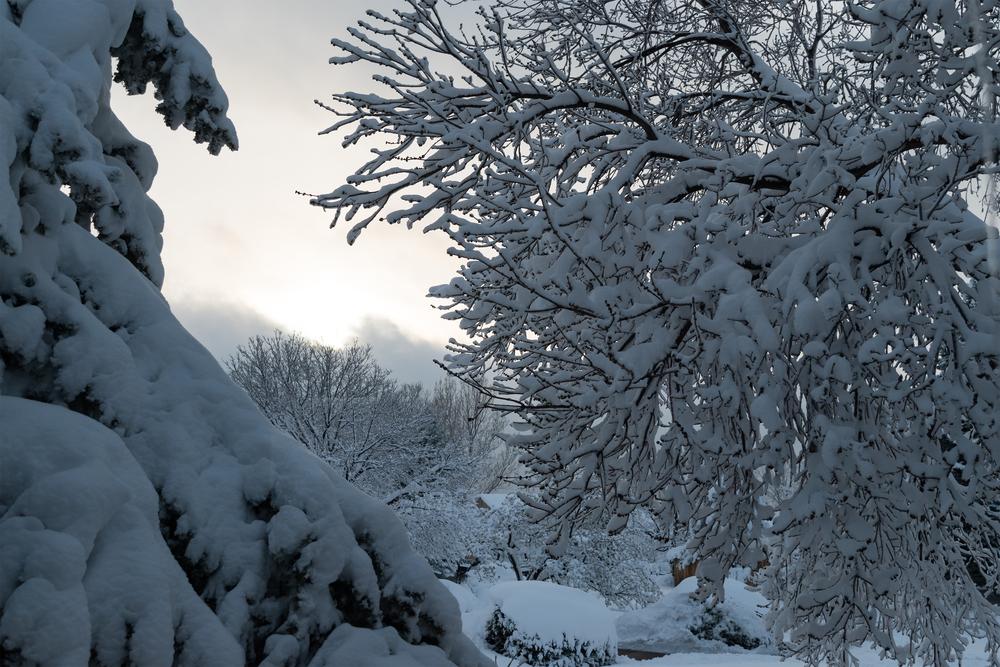 Snow-Set