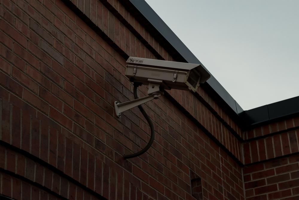 Surveil