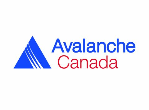 _large_avalanche_canada.jpg