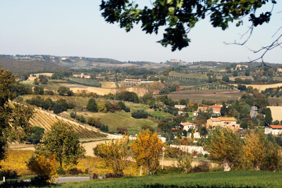tuscany-studio-sophy-41.jpg
