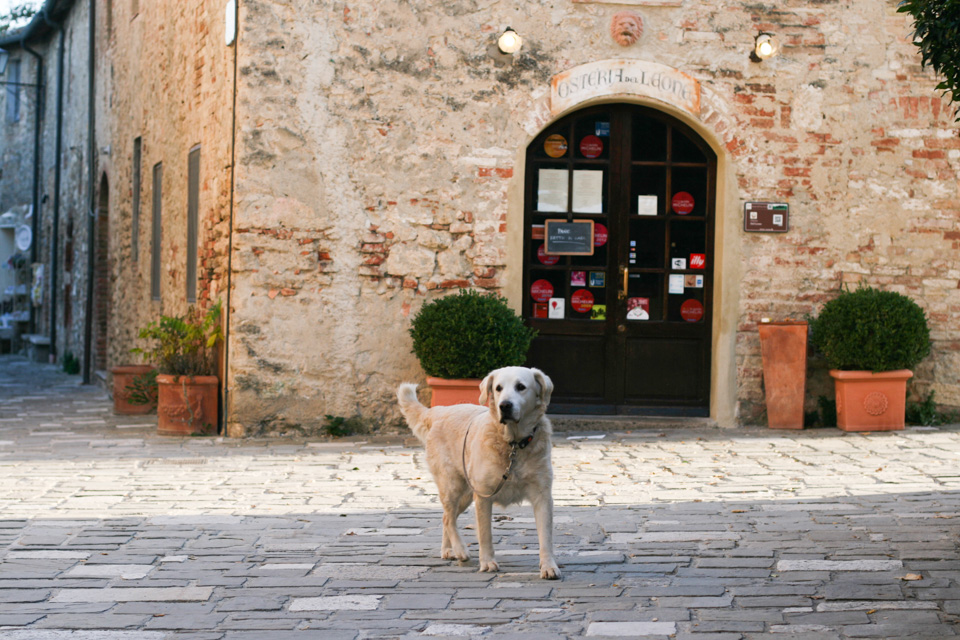 tuscany-studio-sophy-69.jpg