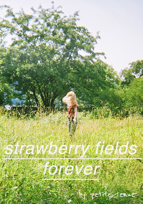 strawberry fields forever, by petite tenue