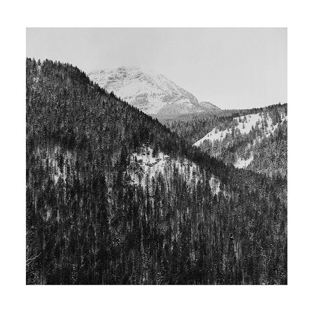 Wasatch Mountains . . . . . .  #hasselblad500cm #trix400 #kodak #hippomag  #gominimalmag  #wasatchmountains #somewheremagazine  #taintedmag #ishootfilm #imaginarymagnitude #paperjournalmag #burnmagazine #weltraumzine #oksfieldmag  #dazedandexposed #mytinyatlas  #filmisnotdead #rentalmag#mack_books  #anotherplacemagazine #minimalzine  #artwista_gallery #utah #naturalutah #lensculture #millennium_images #alpineloop #palepalmcollection #winter #photo_collective #rentalmag