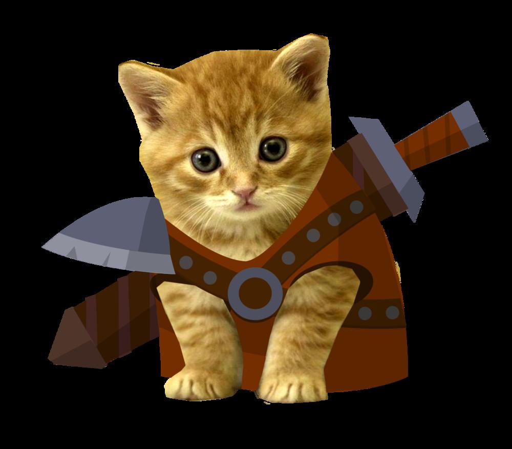 Cat Copy Game