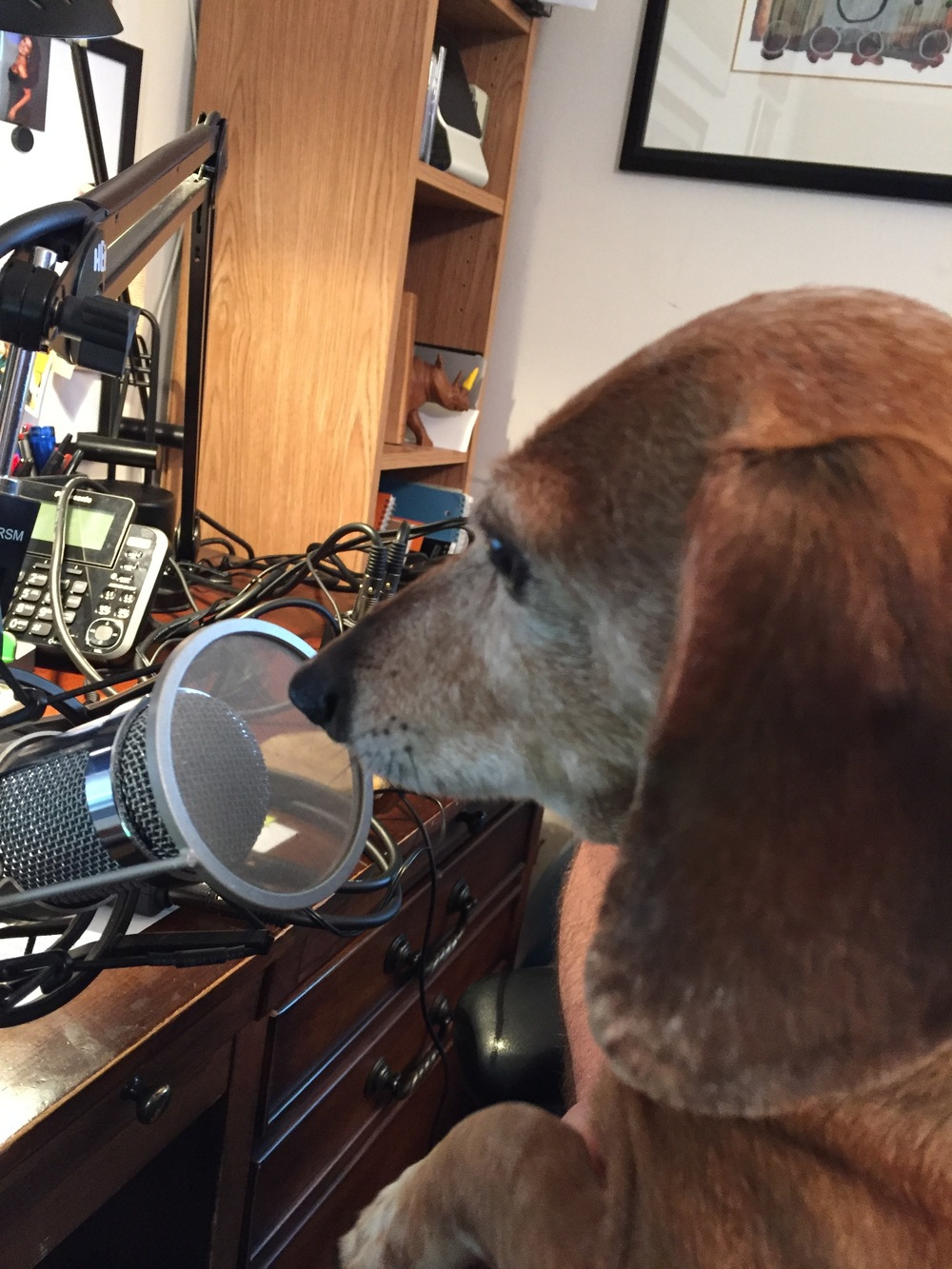 Mattie Podcasting