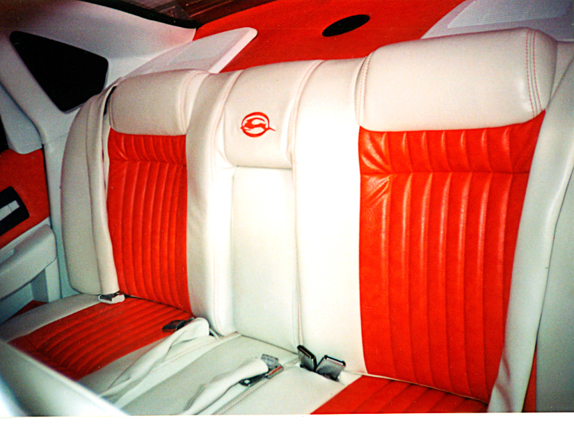 ssBackSeats-copy.jpg