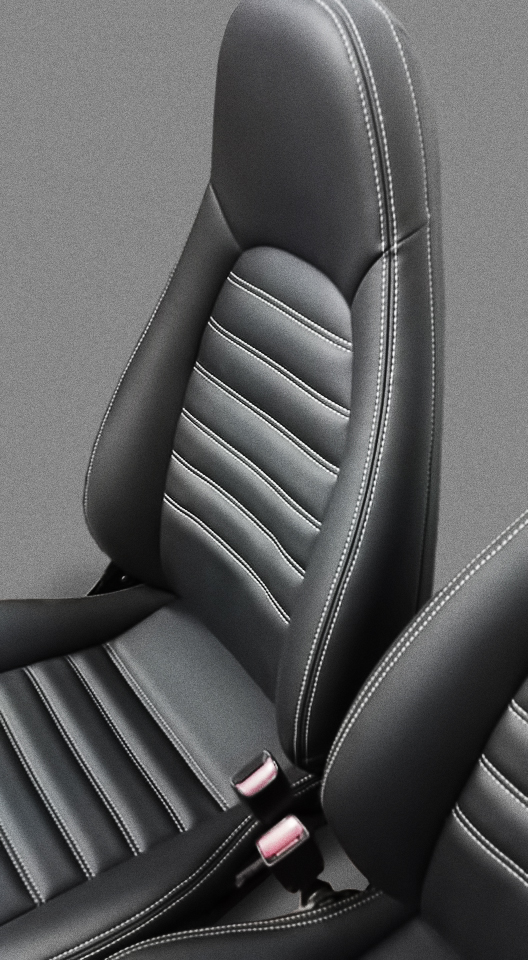 BackSeat02Closeup.jpg