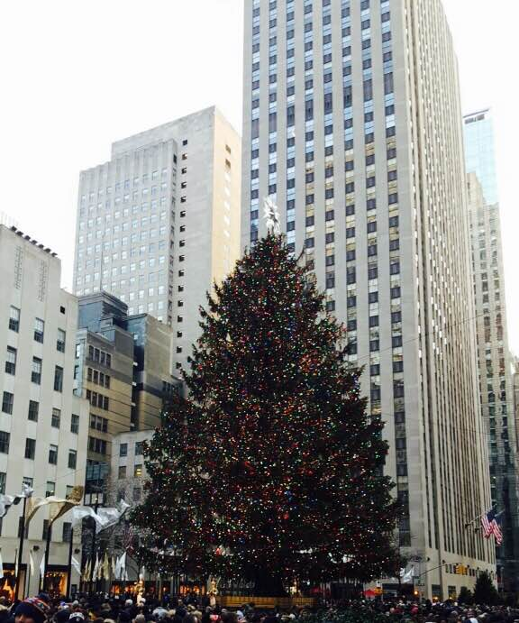 Christmas Tree at Rockefeller Center, Christmas 2015