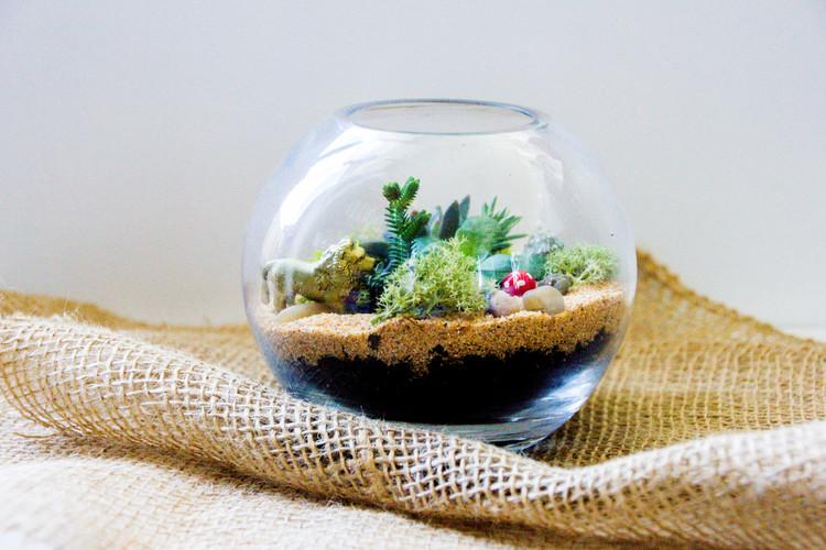 sand and moss animal dinosaur terrarium - Signature Glass Bowl Succulent & Moss Terrarium — Lime Tree Bower