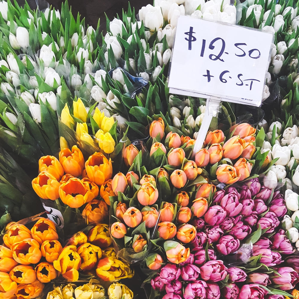 A Guide to the Sydney Flower Market at Flemington -