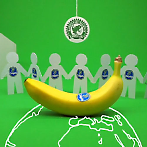 Chiquita.   Repositioning an international banana brand.