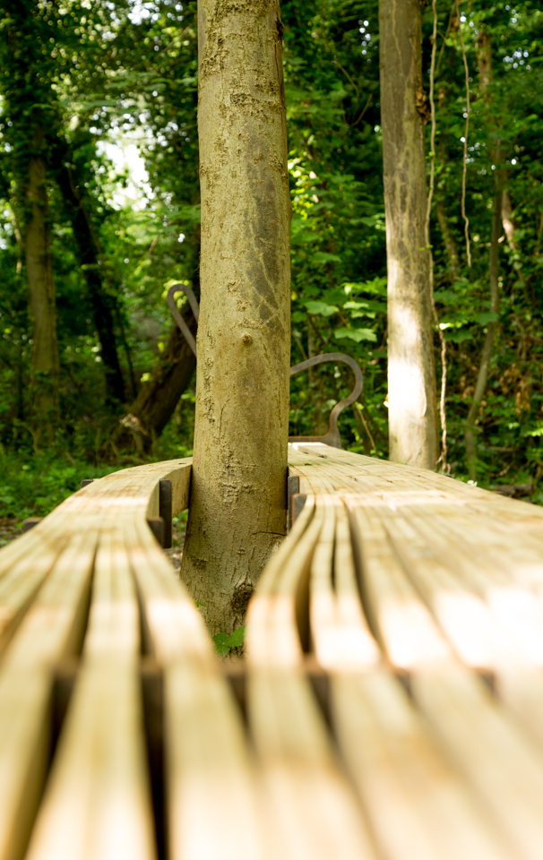 THE BENCH REMAINS-10.jpg
