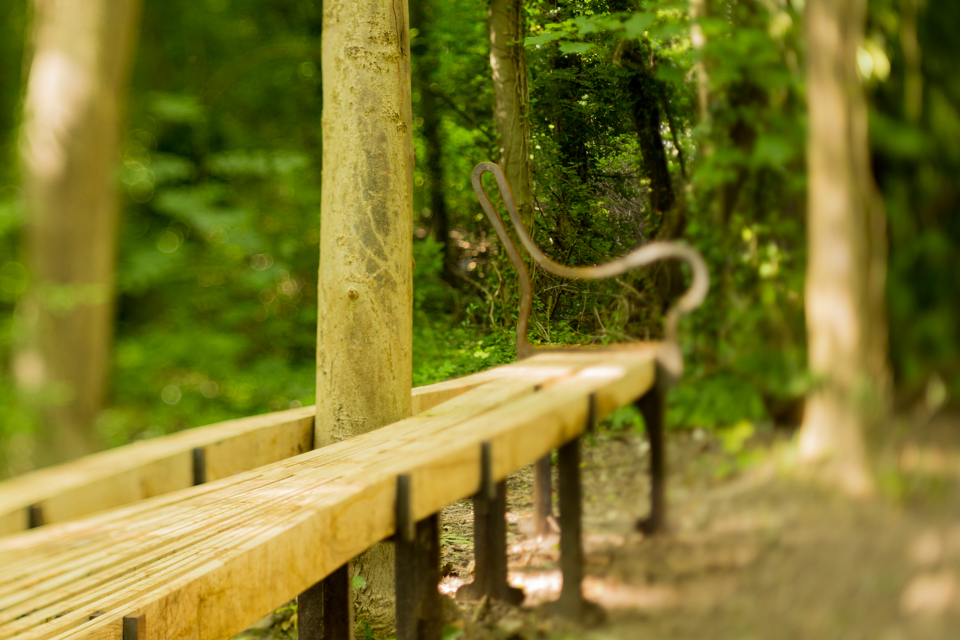 THE BENCH REMAINS-14.jpg