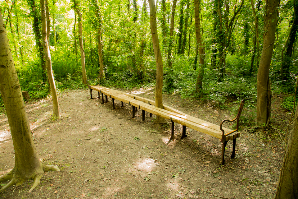 THE BENCH REMAINS-20.jpg