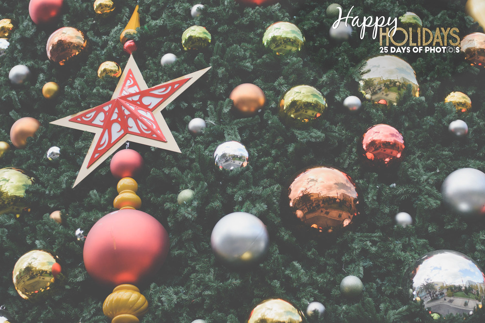 CSchrackPhoto_Holidays_13.jpg
