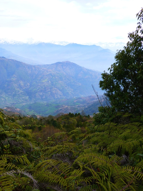 Himalayan_Langtang_Ranges_Adventure_Alternative_Nepal.jpg