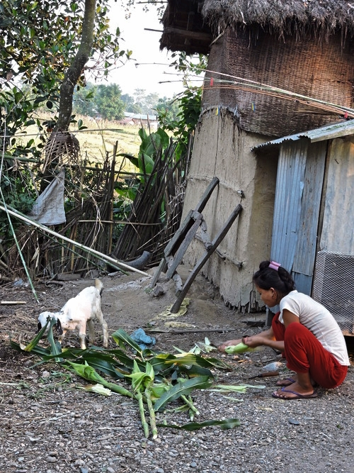 chitwan-dog-woman.jpg