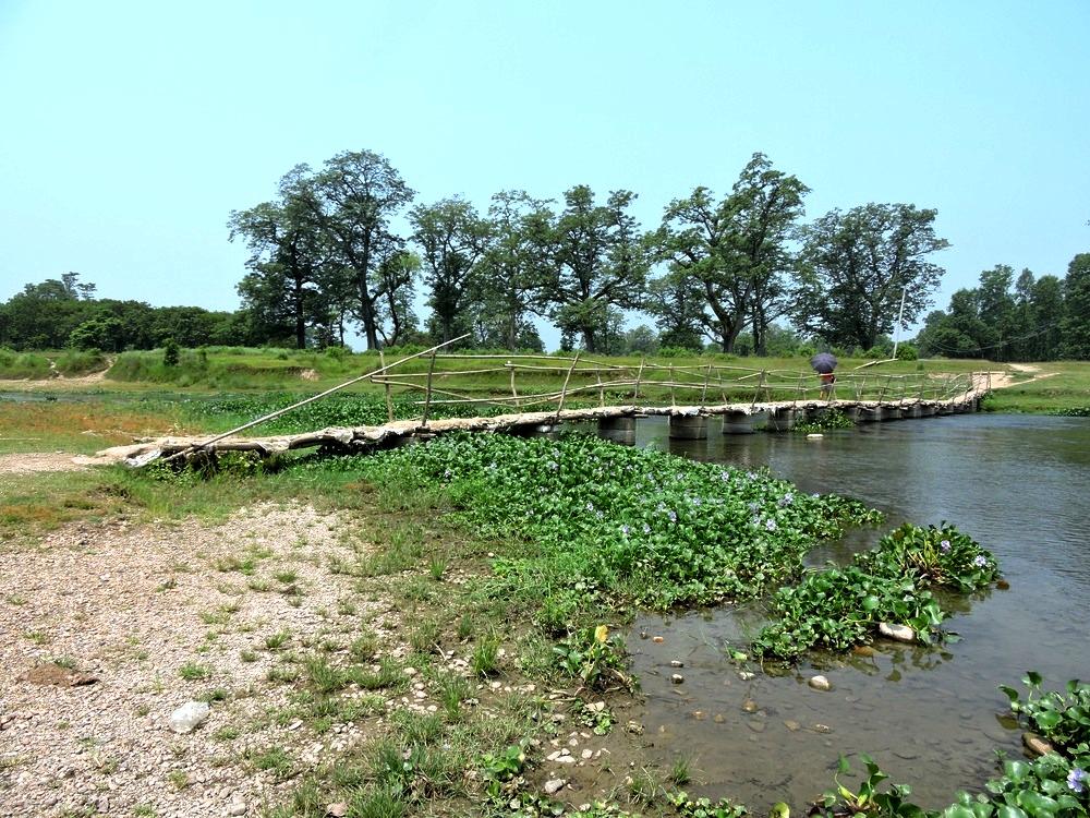 chitwan-nature2.jpg