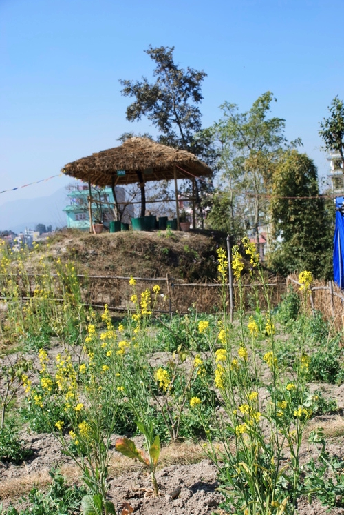Garden_Terrace_Kathmandu_Adventure_Alternative_Nepal.jpg