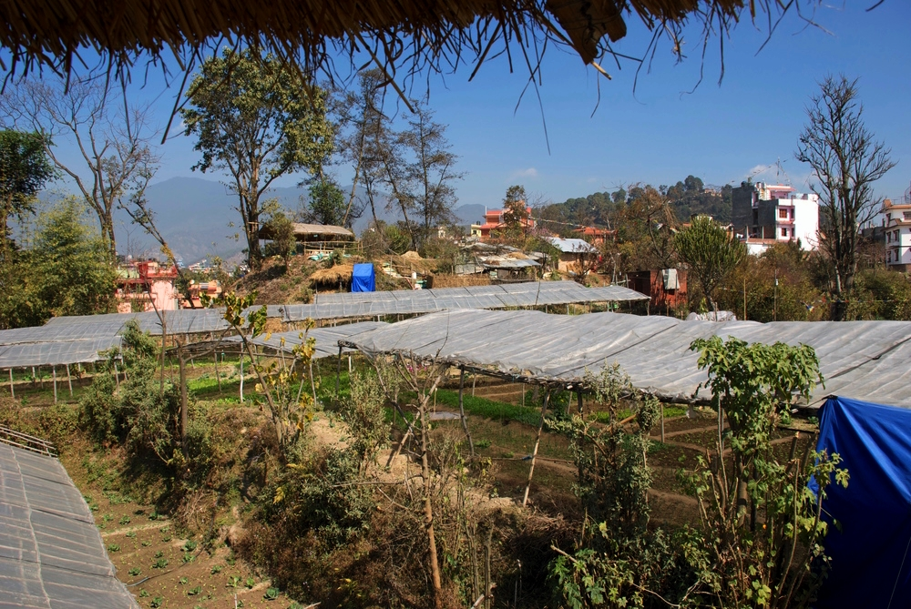 Terrace_Organic_Resort_Kathmandu_Adventure_Alternative_Nepal.jpg