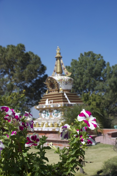 Stupa and flowers in the Monastery garden