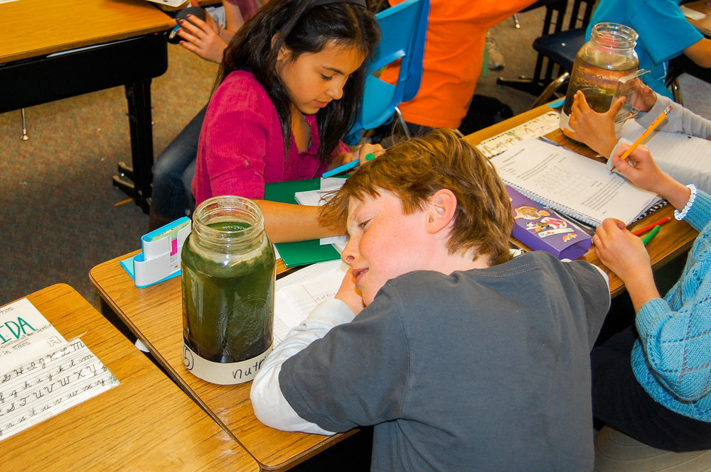 The Ponds in Peril curriculum allows students to explore this global sustainability challenge. We bring this issue to the classroom inside a Mason jar.
